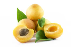 Apricots with leafs Stock Images