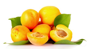 Apricots with leaves isolated Royalty Free Stock Photo