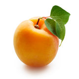 Apricots with leaves isolated on white Stock Photography