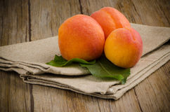 Apricots and leaves Stock Image