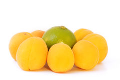 Apricots with lime. The composition of the seven apricots with lime Stock Images