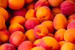 Apricots in a market Stock Photo