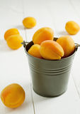 Apricots in metal pail. On a wooden white table royalty free stock photos