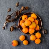 Apricots in a metal pial are stacked. On a gray stone background Royalty Free Stock Image