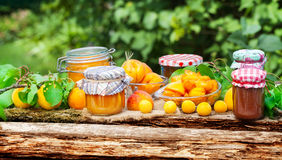Apricots, Mirabelle, jam Stock Images
