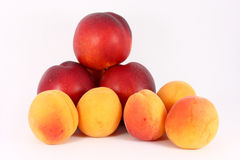 Apricots and nectarines Royalty Free Stock Image
