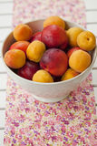 Apricots and nectarines Stock Images