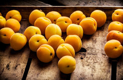 Apricots in old wooden box. Apricots in a rustic wooden box on dark background Royalty Free Stock Image
