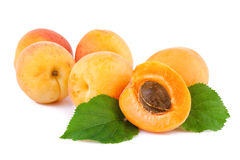 Apricots organic fruits with leaves on white Stock Images