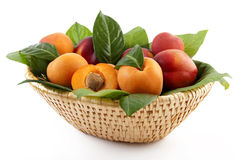 Apricots and peaches Stock Photography