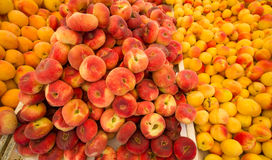 Apricots and peaches Stock Image