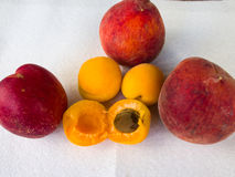 Apricots & Peaches. Fruits on the white background Stock Image