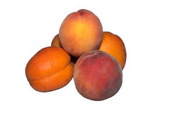 Apricots and peaches Royalty Free Stock Photo