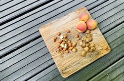 Apricots and pits royalty free stock photos
