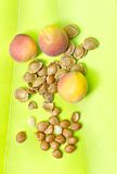 Apricots and pits. Three apricots and pits or seeds with cracked shells Stock Image
