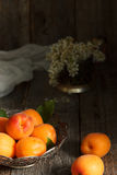 Apricots on the plate, white flowers, wooden background. Royalty Free Stock Photography