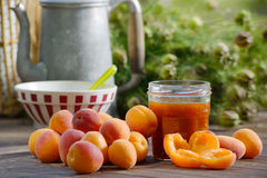 Apricots and pot of jam Royalty Free Stock Photo