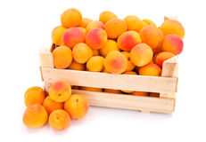 Apricots (Prunus armeniaca) in wooden crate Stock Photos