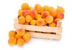 Apricots (Prunus armeniaca) in wooden crate Stock Photos