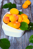 Apricots after rain. Ripe juicy apricots plucked after the rain Royalty Free Stock Photography