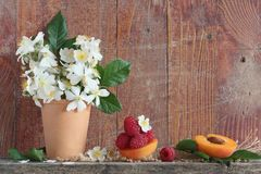 Apricots, raspberry and white flowers Royalty Free Stock Images