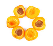 Apricots in round Stock Photos