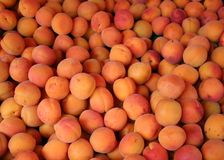 Apricots for sale. Seen here at an international food market royalty free stock images