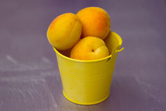 Apricots in a small yellow bucket Royalty Free Stock Photo