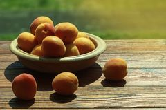 Apricots on a table. Apricots on a wooden table are lit with the summer sun Royalty Free Stock Photos