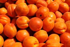 Apricots texture Stock Photos