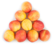 Apricots triangle group Stock Photos