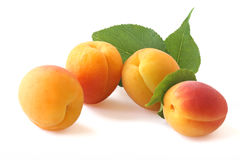 Apricots with twig isolated on white Royalty Free Stock Photos