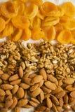 Apricots, walnuts on white Stock Image