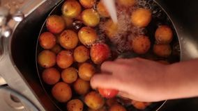Apricots Wash Stock Photos