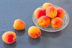 Apricots on wet background Royalty Free Stock Photos