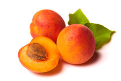 Apricots on white royalty free stock photo