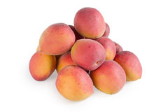 Apricots. On a white background Stock Photography