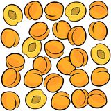 Apricots on white fruit seamless pattern Stock Photo