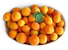 Apricots on white tray. Stock Photography