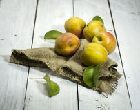 Apricots on a white wooden background. Apricots with a burlap cloth on a white wooden background stock images