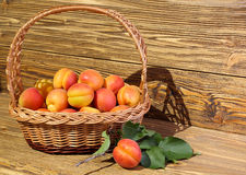 Apricots in a wicker basket royalty free stock photography