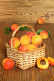 Apricots in a wicker basket Stock Photos