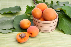 Apricots on wicker coasters Royalty Free Stock Image