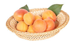 Apricots in a wicker vase Royalty Free Stock Photo