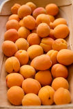Apricots in a wooden basket stock images