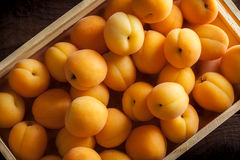 Apricots in wooden box. On dark background Stock Photos