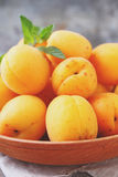 Apricots in a wooden plate Royalty Free Stock Images