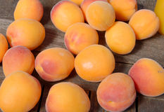Apricots on the wooden table Stock Image