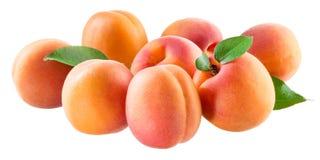 Aprikors Grupp av mogna frukter som isoleras på vit arkivfoton