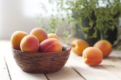 Aprikors i keramisk kopp Selektivt fokusera Arkivbild